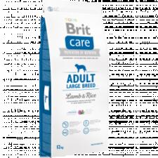 300X300__12kg_adult-lb