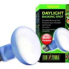 zářivky, žárovky