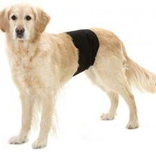 Karlie-Flamingo Inkontinenční kalhoty pro psy černé  74x23cm