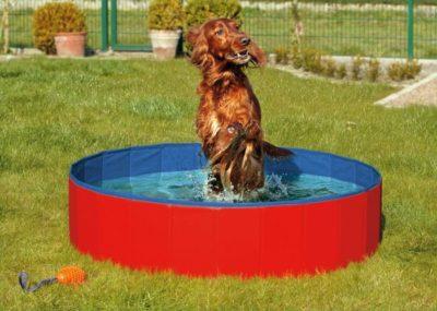 Karlie-Flamingo Skládací bazén pro psy modro/červený 80x20cm