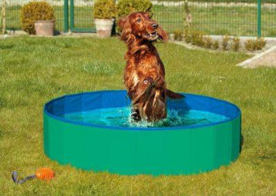 Karlie-Flamingo Skládací bazén pro psy zeleno/modrý 80x20cm