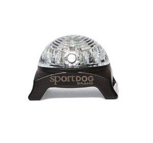 SportDOG Světlo na obojek Beacon