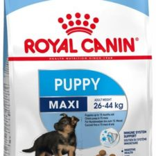 Royal Canin - Canine Maxi Puppy 1 kg