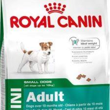 Royal Canin - Canine Mini Adult 8 kg