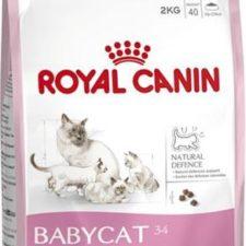 Royal Canin - Feline Growth Baby Cat 34 2 kg