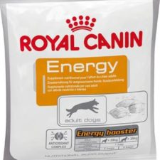 Royal Canin - Canine snack ENERGY 50 g