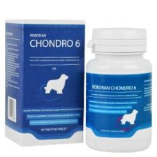 Roboran Chondro 6 pro psy  60tbl