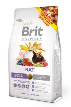 Brit Animals Rat 1