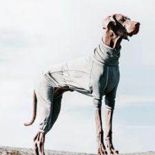 Obleček Hurtta Body Warmer šedý 25M