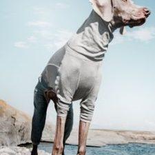 Obleček Hurtta Body Warmer šedý 30M