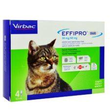 Effipro DUO Cat (1-6kg) 50/60 mg