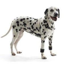 Manžety zátěžové pro psa KRUUSE Rehab S 1pár