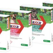Ataxxa pro psy XL 1x2000mg/400mg fialová sol 1 x 4.0 ml