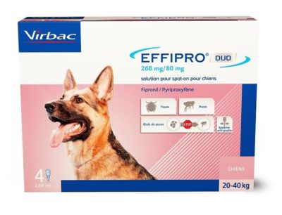 Effipro Duo L 268/80 mg spot-on 4 x 2.68 ml
