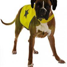 Reflexní vesta pro psa 56cm látková žlutá Duvo+