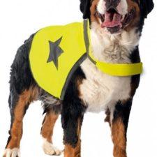 Reflexní vesta pro psa 64cm látková žlutá  Duvo+