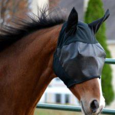 Absorbine Ultrashield EX maska proti hmyzu s ušima velikost horse
