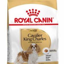 Royal Canin Breed Kavalír King Charles 1