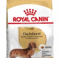 Royal Canin Breed Jezevčík7