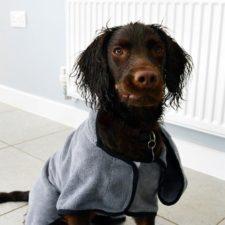 Župan/ručník pro psa Groom S HP