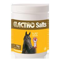 Elektrolyty v prášku při nadměrném pocení Electro Salts