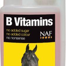 B vitamins pro soustředěnost a vitalitu koní