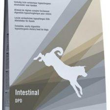 Trovet Canine DPD Intestinal 10 kg