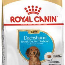 Royal Canin BREED Jezevčík Puppy 1,5 kg