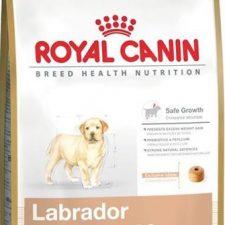 Royal Canin BREED Labrador Puppy 12 kg