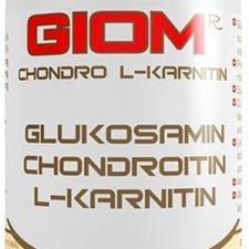 Giom ERA Chondro L-karnitin SPORT pro psy 400g