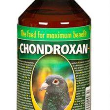 Chondroxan holubi sol 500 ml