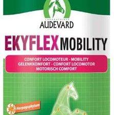 Ekyflex Mobility 1L
