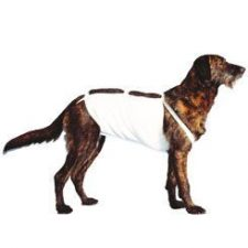 Bandáž břišní č.4 pro psy