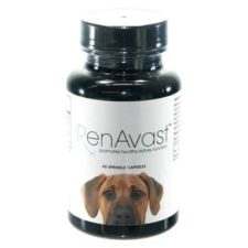 renavast-for-dogs-60ct-capsules-3